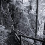 Uwe Statz - Fotografie - Fränkische Schweiz - FAB4 - 21