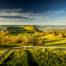 Uwe Statz - Fotografie - fränkische Schweiz - Filterfotografie